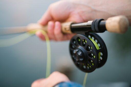 Pesca Con Mosca, Caña De Pescar, Pesca, Varilla, Mosca