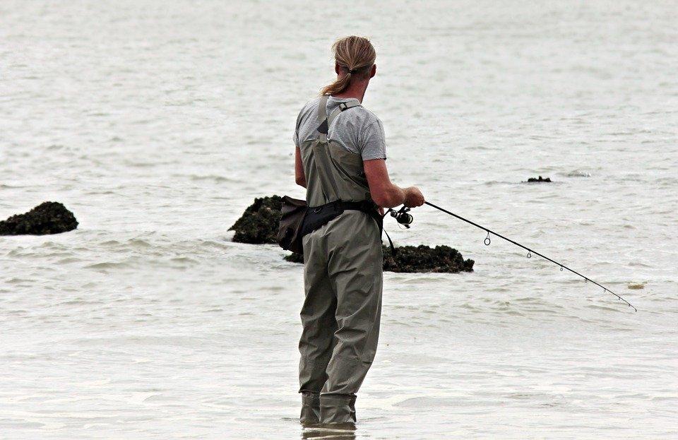 Pescador De Caña, Peces, Mar Del Norte, Aguas, Pescador